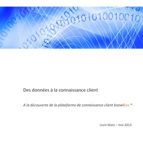 livre blanc big data
