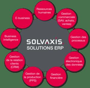schema E business, BI, Gestion commerciale, Gestion des processus, GED, CRM, PPS, Gestion financière
