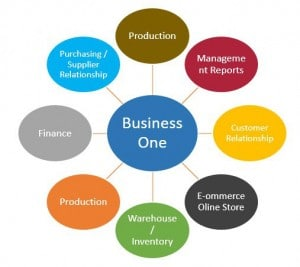 business one, finance, production, e-commerce, supplier