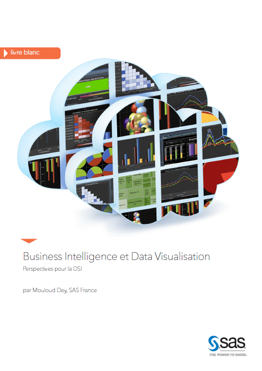business data livre blanc