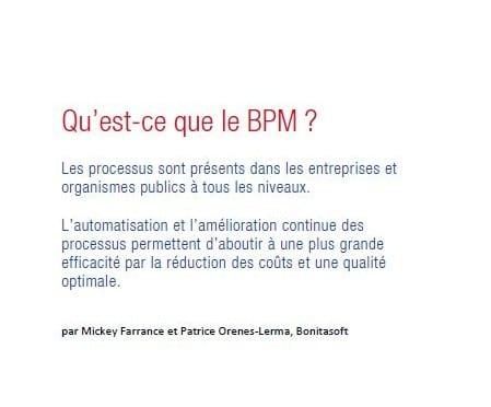 Business Process Management (gestion des processus métiers)
