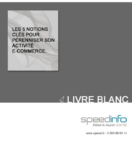 Livre Blanc : Les 5 notions clés pour pérenniser son activité e-commerce