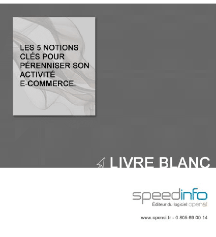 Livre Blanc e-commerce