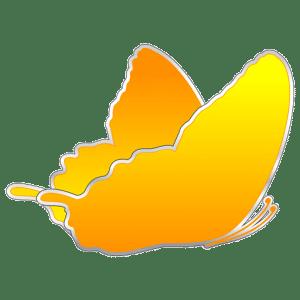 papillon pikadelli