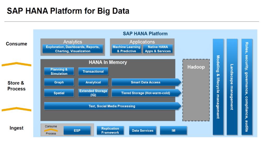 schéma erp pour big data editeur de logiciel SAP