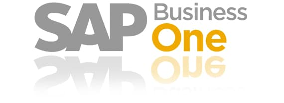 sap one business